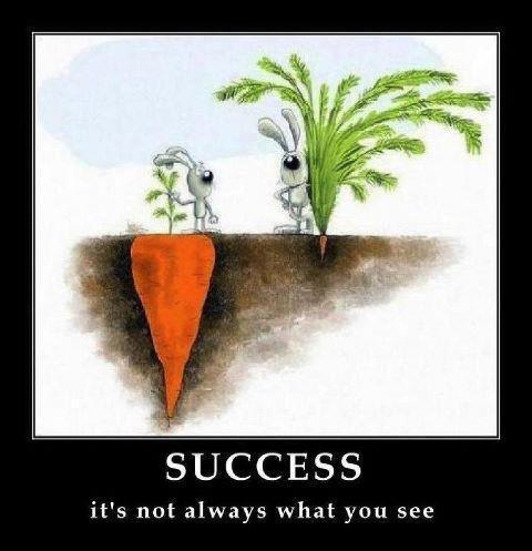 Suksess